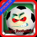 愤怒的足球2