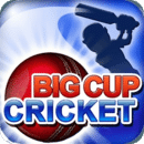 板球杯 精简版 Big Cup Cricket Free
