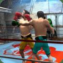拳击动作格斗游戏