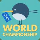 2048世界冠军