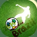 巴西世界杯指南