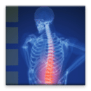 有声书 - 背部疼痛