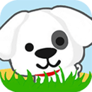 小狗爱草地