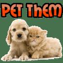 宠物: 宝贝动物
