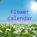 妇女的日历(免费)