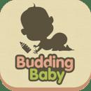Budding Baby