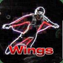 翼装高空跳伞VR