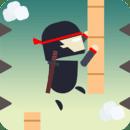 Action Ninja