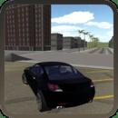 极限赛车驾驶3D