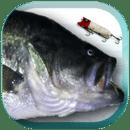 鱼饵垂钓  Lure Nushi Fishing