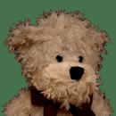 布鲁诺的小熊