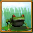Frog Maritime Adventure