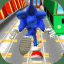 Subway Sonic Run Dach