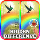 Hidden Difference: Rainbow