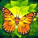 蝴蝶之翼 Flutter