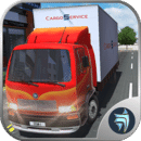 Transporter Truck Cargo Driver