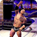 Wrestling WWE Action Videos