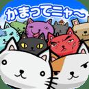 猫咪田种植 中文版