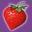 草莓网StrawberryNet