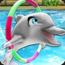我的海豚表演