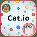 Cat.io