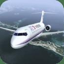 模拟飞行员