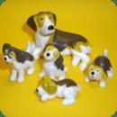 小狗狗的品种