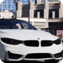 Real Bmw Simulator M3