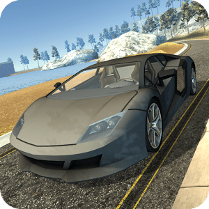 Race Car Driving Simulator
