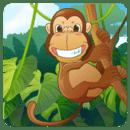 小猴水果采摘