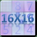16x16数独挑战赛