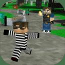 警察和小偷