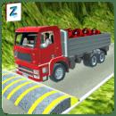 3D卡车模拟 年奥运会 2016