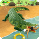沼泽 鳄鱼 攻击 2017年