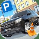 Luxury SUV Car Parking