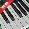 音乐钢琴键盘