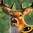 猎鹿人2014完美版