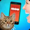 猫翻译人到猫短语