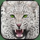 雪豹模拟器