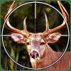 丛林野生动物狩猎