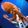 八达通水下模拟器 - 潜水在海洋!