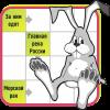 填字游戏 - 我的兔子