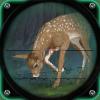 狩猎 专家 Safari浏览器 动物 猎人
