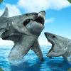 鲨鱼的生活 - 饥饿辛