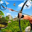 Bird Hunting Mania
