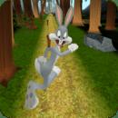 Looney Toons Jungle Dash