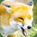 狐狸争霸模拟器