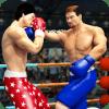 世界标签团队超级拳击拳击明星冠军3D