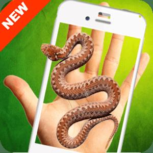 蛇在屏幕上恶作剧