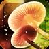 梦幻蘑菇动态壁纸